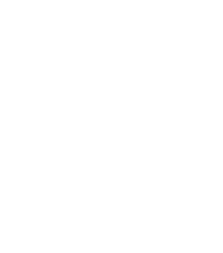 KC BBQ Experience